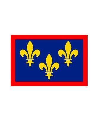 Drapeau Anjou 150 x 225 cm